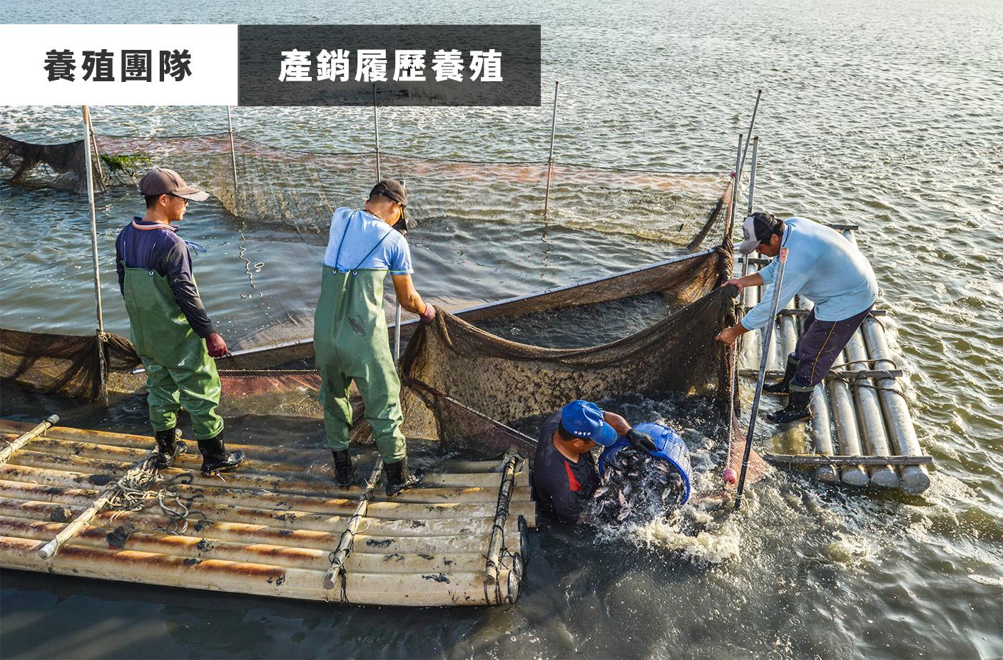 水產網購,水產宅配,水產批發,水產海鮮,水產網購推薦